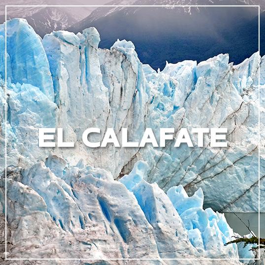 GALLERY EL CALAFATE