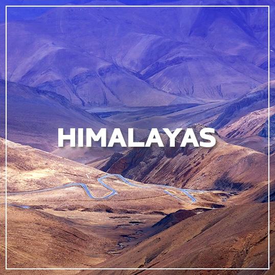GALLERY HIMALAYAS